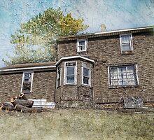 House on a hill by vigor