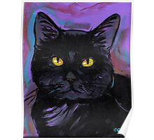 Expressionistic Black Cat Poster