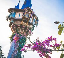 Rapunzel's Tower by dkelly1126