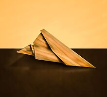 Paper Airplanes of Wood 2 by YoPedro