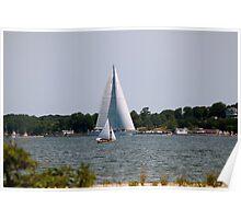 Sailboats Big & Small Poster