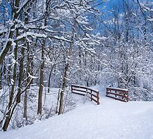Snow Covered Walking Bridge - Indiana by Mike Koenig
