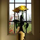 Yellow rose by KatDoodling