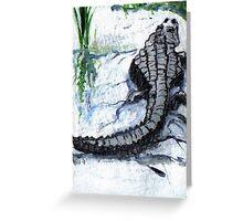 Florida Alligator Greeting Card