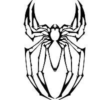Stylized Spider-Man Emblem Photographic Print