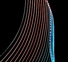 Harp Strings by David Lamb