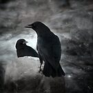 Dark crows by gothicolors