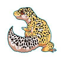 Leopard Gecko Photographic Print