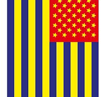 US Flag Romania by viixiigfl