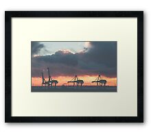 DIPLODOCUS - FREMANTLE Framed Print