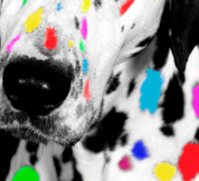 Multi-coloured Dalmatian Sticker