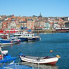upper harbour by photoeverywhere