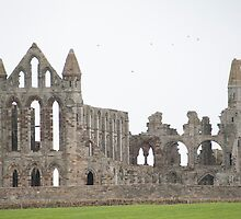 whitby abbey remains by photoeverywhere