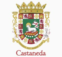 Castaneda Shield of Puerto Rico Kids Clothes