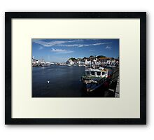 Sea Otter at Weymouth Framed Print