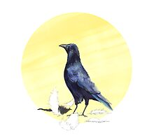Crow by ankastan
