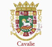Cavalie Shield of Puerto Rico by William Martin