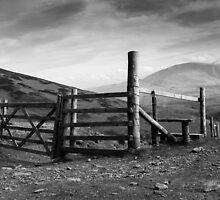 Gateway to Skiddaw by Steven Dworak