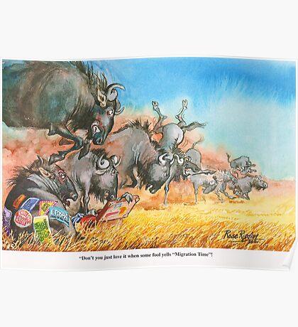 Foolish wildebeest Poster