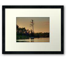 Bird On The Bay Framed Print