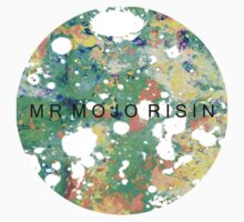 Mr. Mojo Risin' by pelldippers