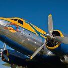 1945 Douglas DC3 by Frank Kletschkus
