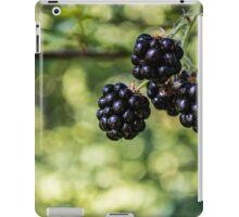 Berry Bokeh iPad Case/Skin