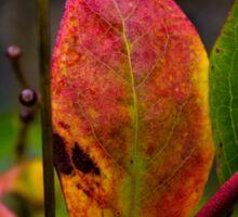 Colors of Autumn Sticker