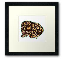 Dorothy - Pastel Ball Python Framed Print