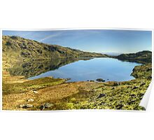 Levers Water Poster