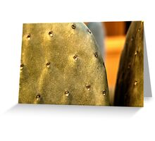 Front Yard Prickly Pear Greeting Card