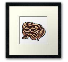 Lesser Ball Python Framed Print
