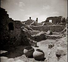 { Pompeii } by Lucia Fischer