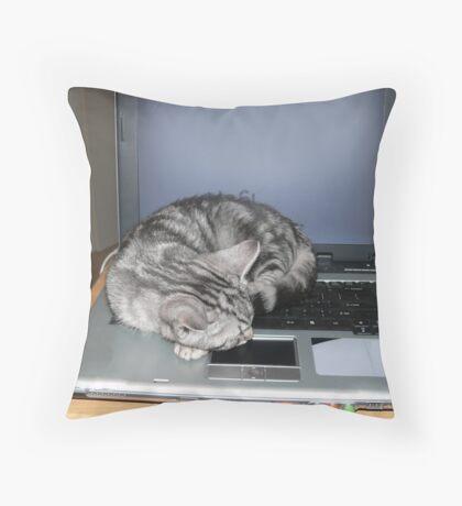 Kitten finds a warm spot Throw Pillow