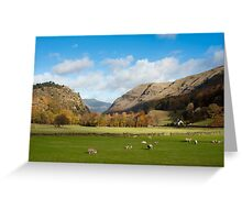 View from the scenic A591 at Legburthwaite Greeting Card