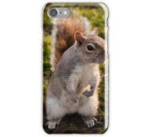 St. James Park Squirrel - London iPhone Case/Skin