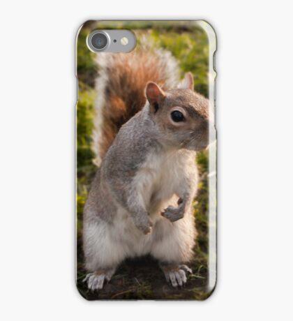 St. James Park Squirrel - London iPhone Case/Skin