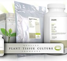 Plant Tissue Culture by caissonlabs