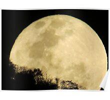 springtide's moonrise II - salida de la luna en primavera Poster