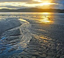 Sunrise Sand Patterns by George Petrovsky