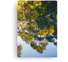 Garden Reflections Canvas Print