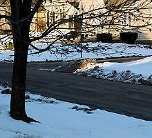 Snow in the Neighborhood by Joy  Rector