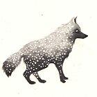 Snow Wolf by Hannah Falvey