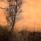 Seconds of light by jamesataylor