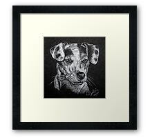 Jack. Framed Print