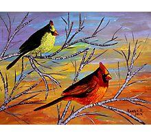 Birds on the birch tree Photographic Print