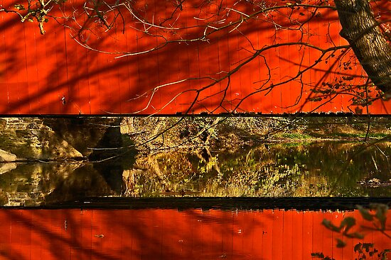 Red and Gold by cclaude