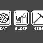Eat, Sleep, Mine by thehookshot