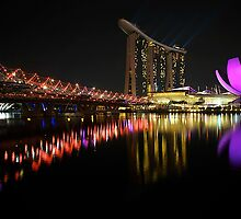 Singapore  by fernblacker
