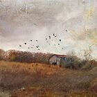 """""""Tawny"""" by Cheryl Tarrant"""